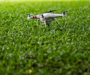 Drone on Grass - What's the Hardest Wearing Grass Seed? - Boston Seeds
