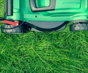 Lawnmower on Grass - Mowing Your Lawn Tips - Boston Seeds