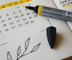 Yearly Planner - How to Plan Your Lawn - Boston Seeds