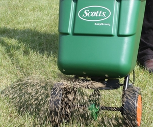 Grass Seed Spreading - Grow a Lawn Using Grass Seed - Boston Seed