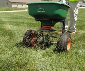 Grass Seed Spreader - Which Spreader is Better? - Boston Seeds