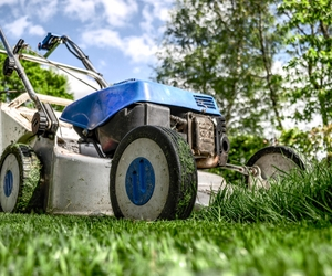 April Lawn Care Tips - Boston Seeds