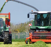 grass harvesting - agricultural grass seed - Boston Seeds