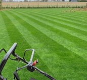 Mown grass - Lawn Seed UK Supplier - Boston Seeds
