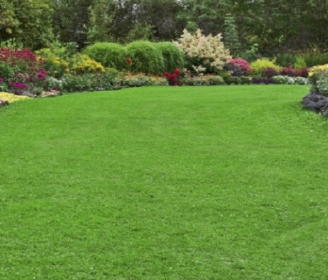 BS Year Round Lawn Fertiliser Package