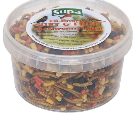 Hi- Energy Mealworm Platter with Suet & Fruit