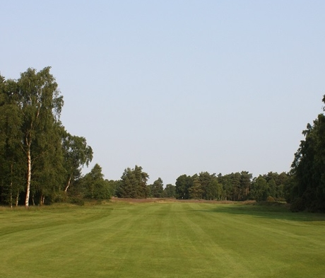 BS Golf Tees & Fairways Grass Seed (without ryegrass)