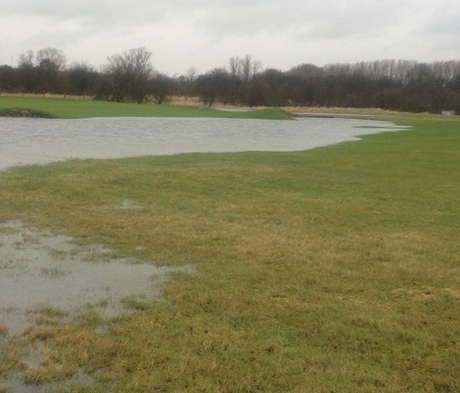 BS Waterlogged and Wet Soils Grass Seed
