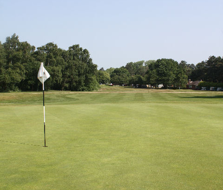 BS Premier Golf and Bowling Greens Grass Seed