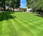 BS Quality Hard Wearing Lawn Seed