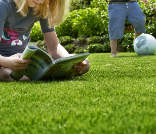 BS Childs Play Lawn Seed