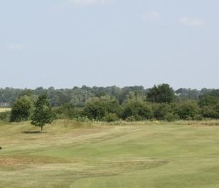 BS Golf Tees & Fairways Grass Seed (with ryegrass)