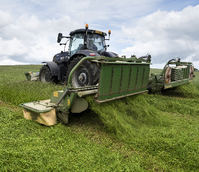 BS Aber High Sugar Grass - Medium Term Silage (Without Clover) - Medium Term 3-4 Years