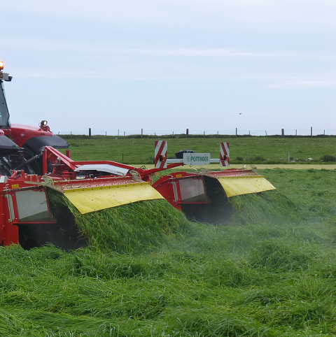 BS Overseeder - Cutting Ley Mixture